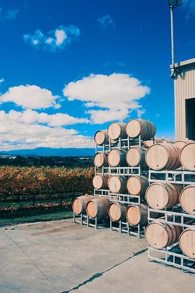 Cheap Winery Tours Melbourne
