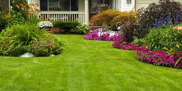 Affordable Lawn Mowing Price Melbourne