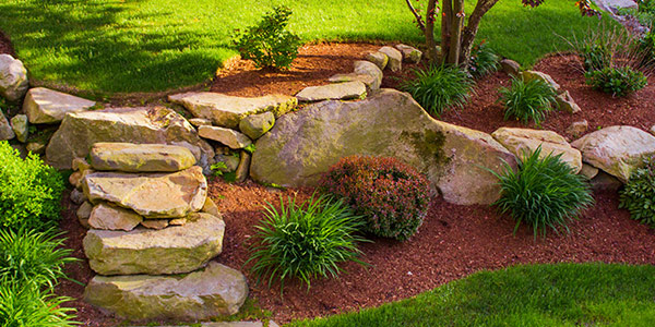 Landscapte Design Services Wellington Region